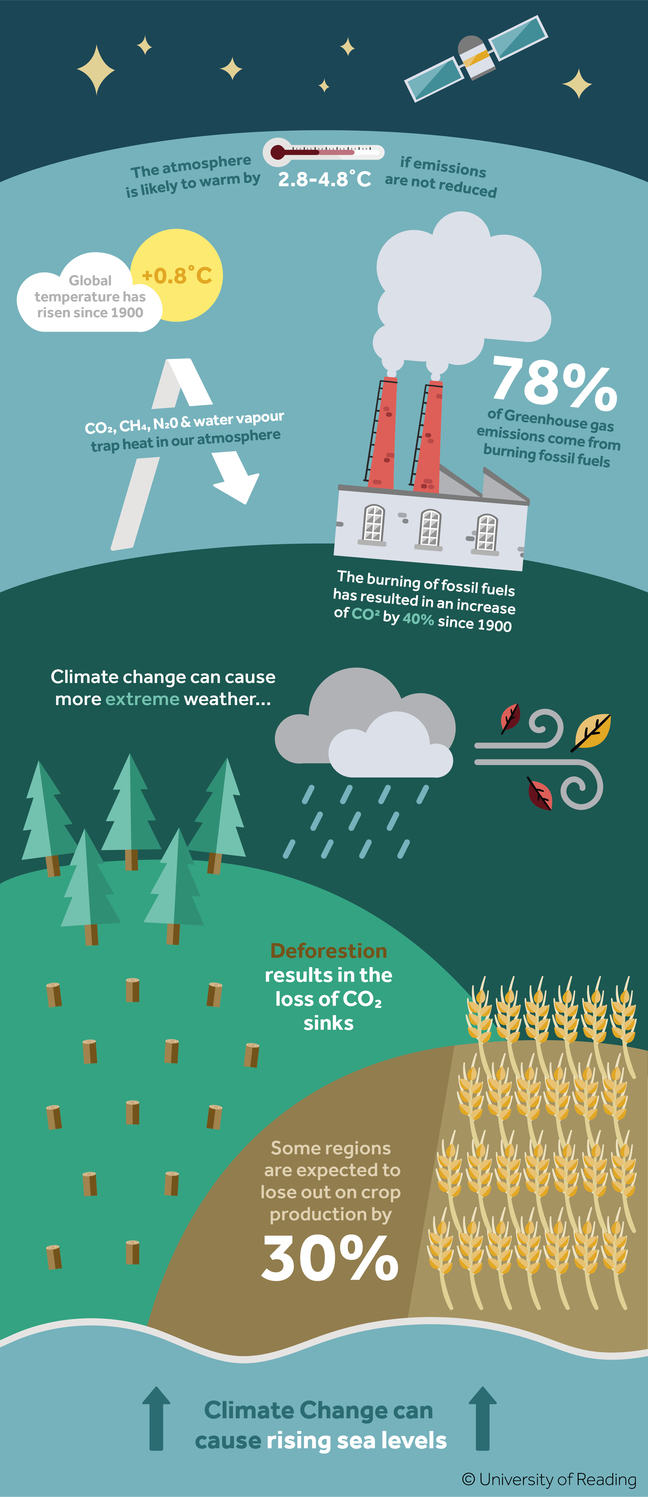 An infographic on climate change stating the following: The atmosphere is likely to warm by 2.8 to 4.8 degrees Celsius if emissions are not reduced. Global temperature has risen 0.8 degrees Celsius since 1900. Carbon dioxide, methane, nitrogen and water vapour trap heat in our atmosphere. 78% of Greenhouse gas emissions come from burning fossil fuels. The burning of fossil fuels has resulted in an increase of carbon dioxide by 40% since 1900. Climate change can cause more extreme weather. Deforestation results in the loss of carbon dioxide sinks. Some regions are expected to lose out on crop production by 30%. Climate change can cause rising sea levels.