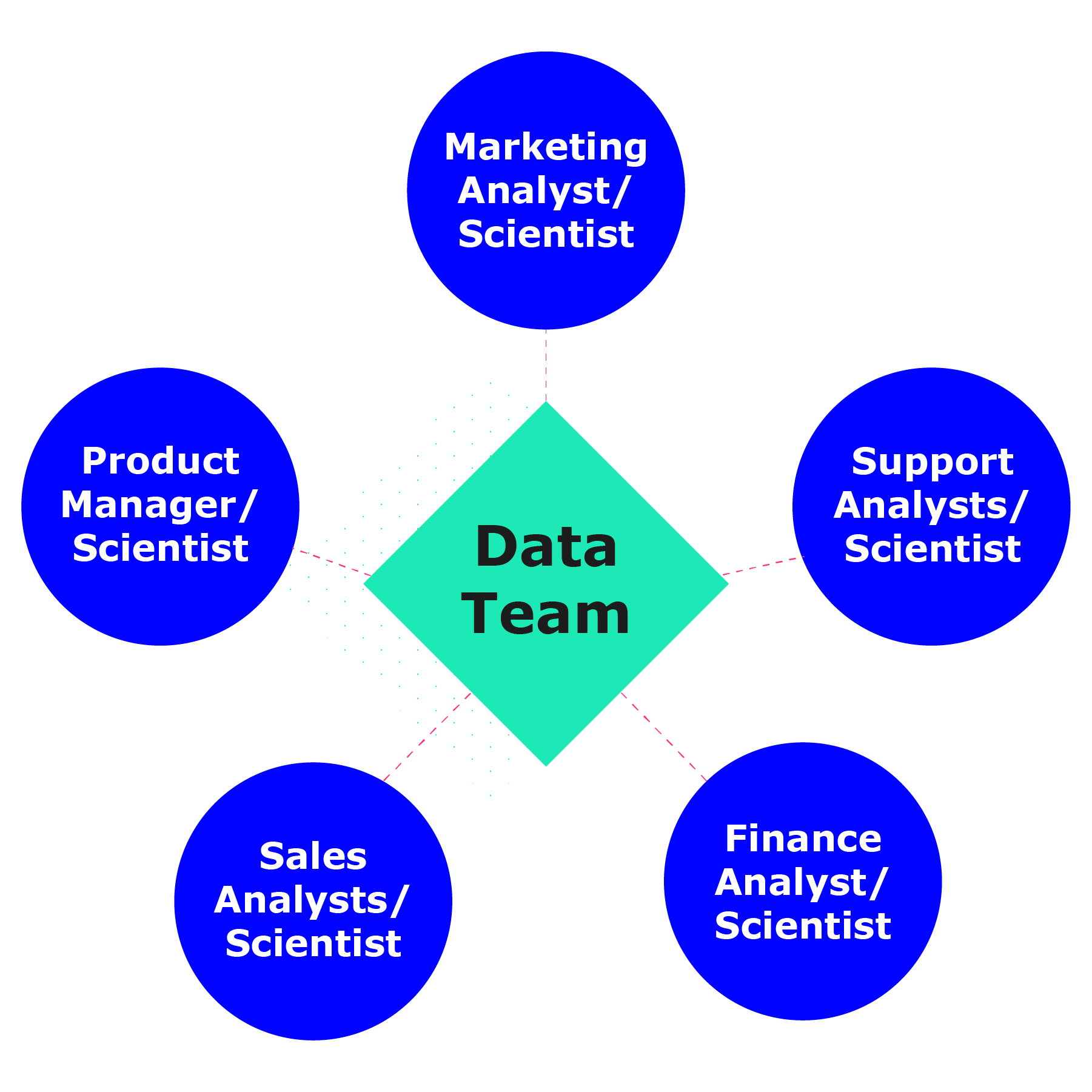 Diagram shows the data team and the surrounding embedded analysts, who have domain knowledge about the business function and understand datasets that can help them answer questions.