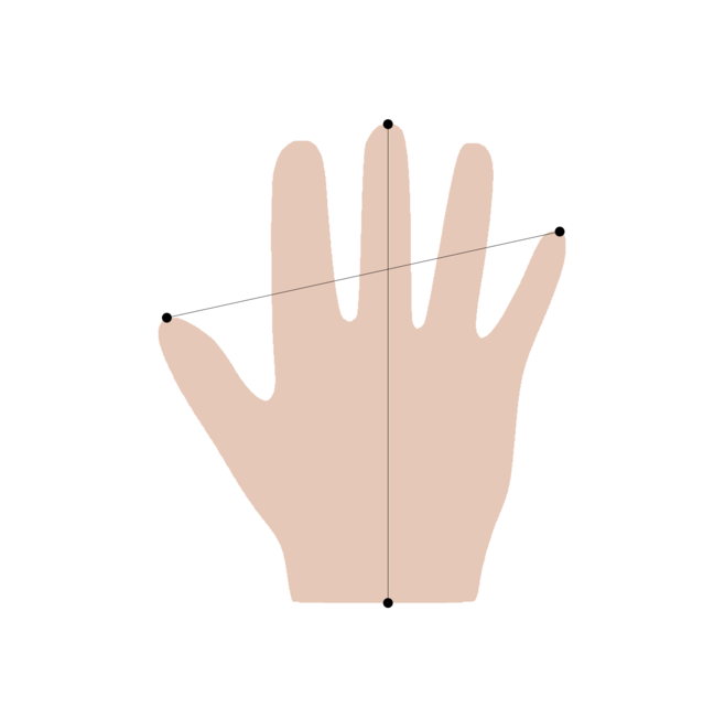 Measurements for the length and the span of a hand shape.