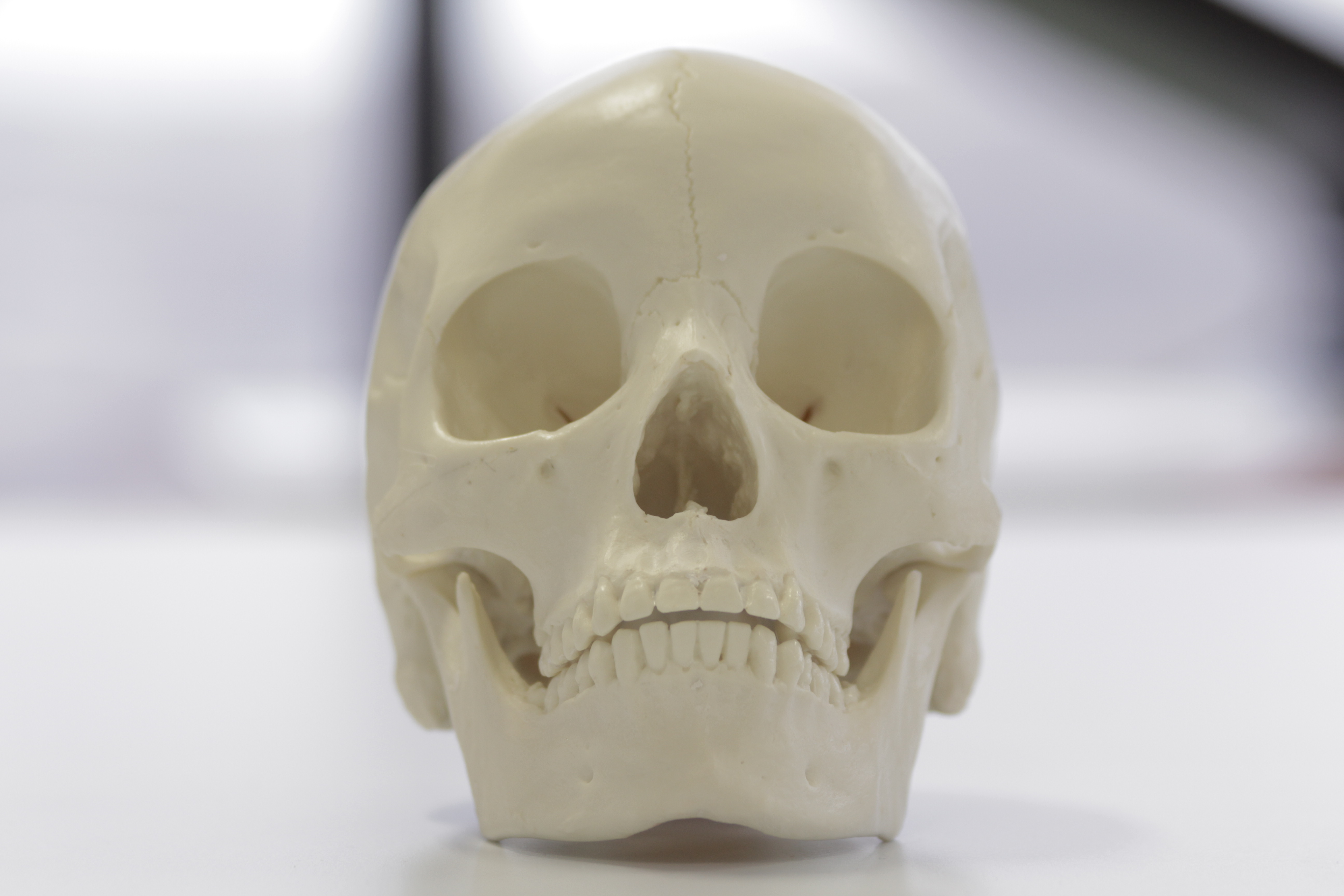 An Asian skull skull showing 'heart-shaped' nasal aperture