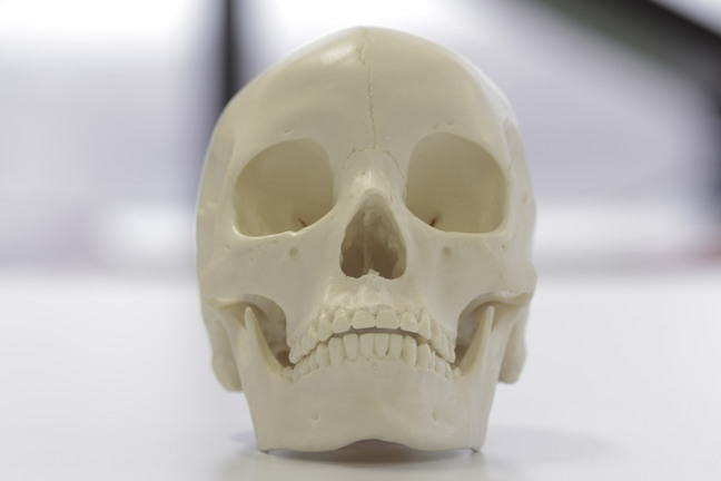 An Asian skull skull showing 'heart-shaped' nasal aperture