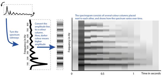 Building a spectrogram