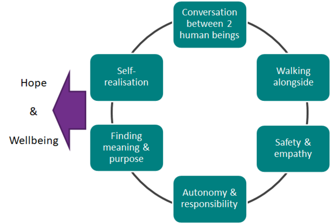 Model of care that shows the steps required to achieve hope and wellbeing
