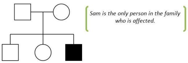 Family tree showing that Sam is the only person in the family who is affected