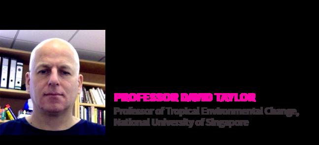 Prof. David Taylor,