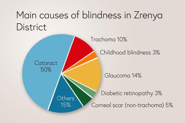 Causes of blindness in Zrenya