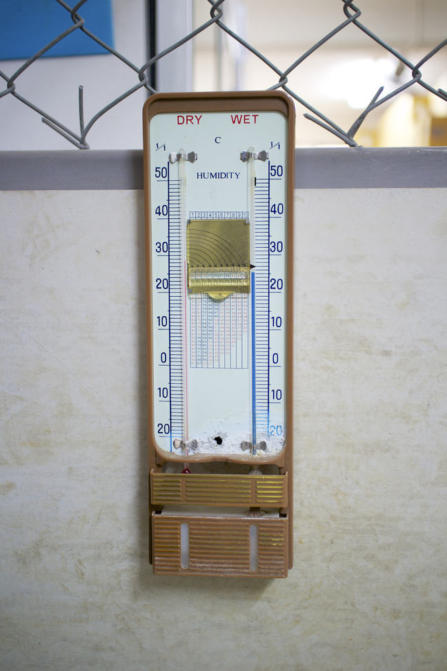 Wet bulb and dry bulb thermometer