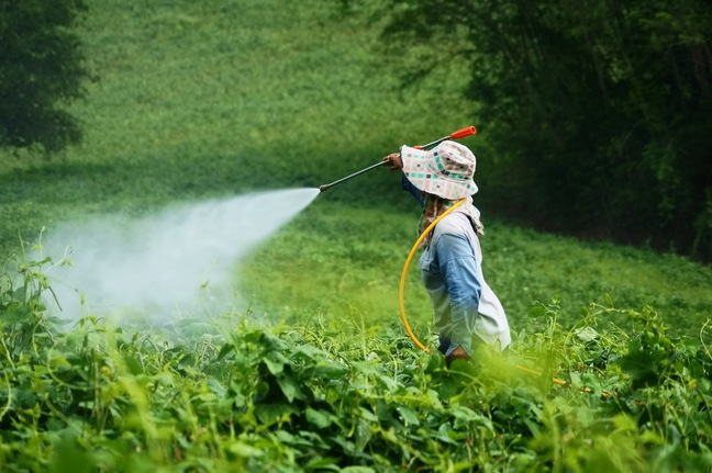 Woman spraying with pesticie in a field