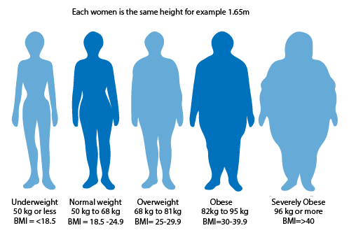 Obesity chart showing 5 figures from underweight to severely obese