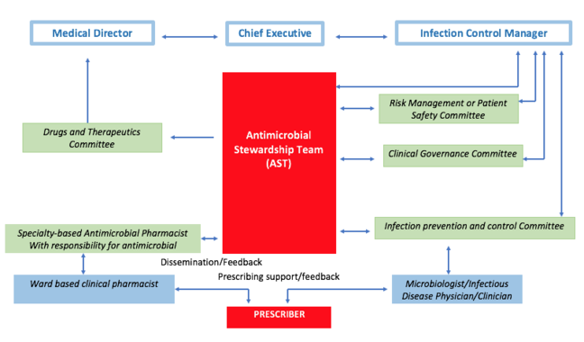 Central Antimicrobial Stewardship Team who liaise with key committees to disseminate information and feedback to them.  All committees must feedback to the Medical Director, Infection Control Manager and the  Chief Executive