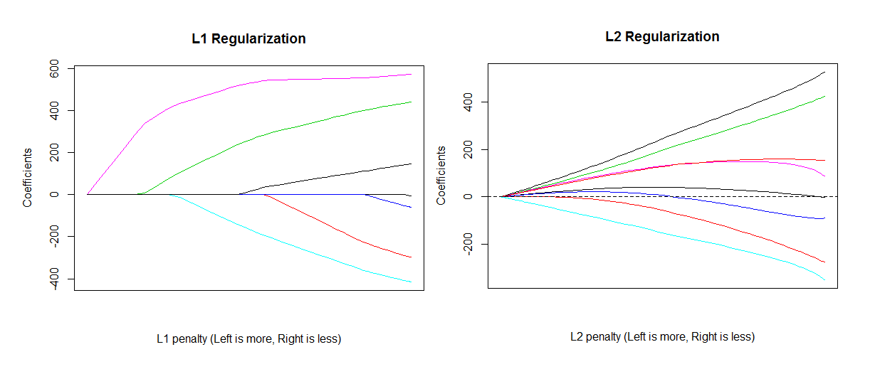 Two graphs showing the effect of increasing the regularization penalty for L1 and L2 regularization respectively, from 0 to infinity (where all model parameters are shrink to 0). In L1 regularization, all parameters monotonically reduce in absolute value and one by one hit zero and stick there. In L2 regularization, the sum of the squared value of all parameter monotonically shrinks towards zero, but individual parameters can increase in absolute value, and cross zero. They only stick at zero when the penalty reaches infinity.