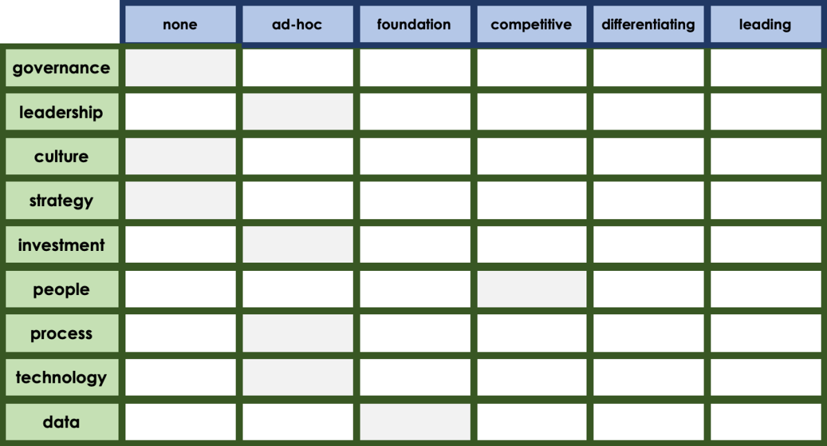Matrix listing the 8 areas from the success model in the left column (governance, leadership, vulture, strategy, inverstment, people, process, techology and data) with the maturity scale as the header row along the top: none, ad-hoc, foundation, competitive, differentiating or leading