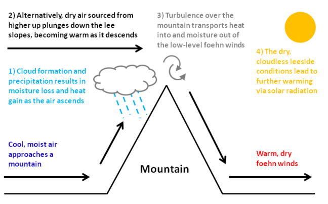 Diagram showing the foehn effect as air approaches a mountain from the west and is forced to rise. Cool, moist air approaches a mountain. Stage 1: Cloud formation and precipitation results in moisture loss and heat gain as the air descends. Stage 2: Alternatively, dry air sourced from higher up plunges down the lee slopes, becoming warm as it descends. Stage 3: Turbulence over the mountain transports heat into and moisture out of the low-level foehn winds. Stage 4: The dry, cloudless leeside conditions lead to further warming via solar radiation. The result is warm, dry foehn winds.