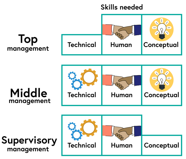Top management require some technical skills, but higher levels of human and conceptual skills. Middle management require high levels of technical, human and conceptual skills. Supervisory management require high levels of technical and human skils, but lower levels of conceptual skills.