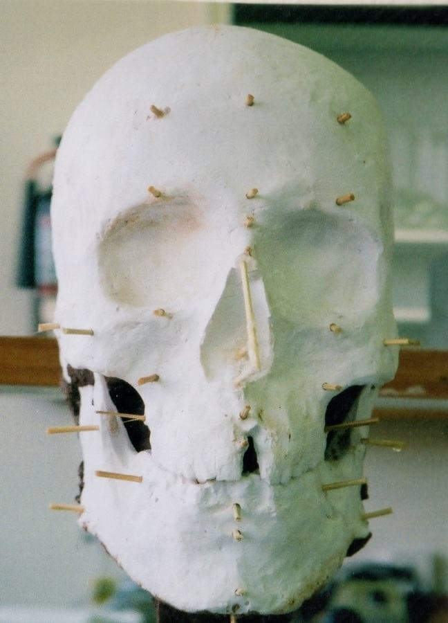 The plaster cast of Mr. X's skull, created by Nikki Taylor