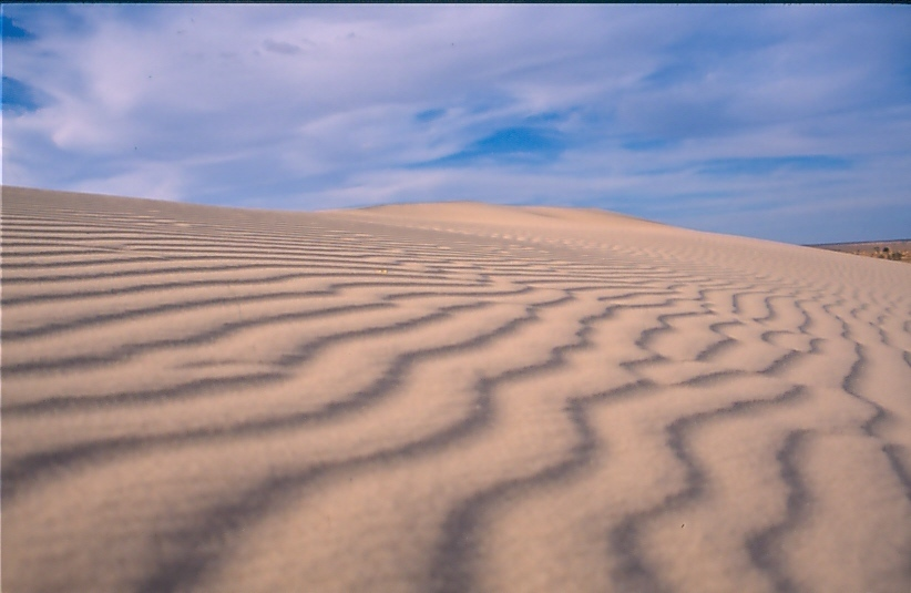 Dunes of Lake Mungo