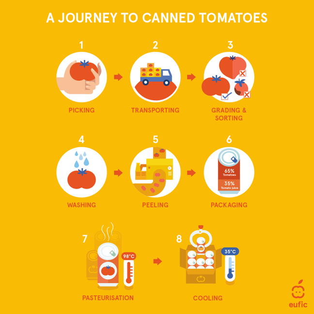 tomato canning process in 8 illustrated steps: picking (hand holding a tomato), transporting (lorry carrying a load of boxes of tomatoes), grading and sorting (3 tomatoes of different sizes and shapes, 2 are crossed as unacceptable and 1 ticked as acceptable), washing (tomato with water droplets), peeling (conveyor belt showing tomatoes entering a machine and emerging peeled), packaging (tin labelled 65% tomatoes, 35% tomato juice), pasteurisation (tomato can with a thermometer reading 98 degrees Celsius), cooling (box of cans of tomatoes and a thermometer reading 35 degrees Celsius)