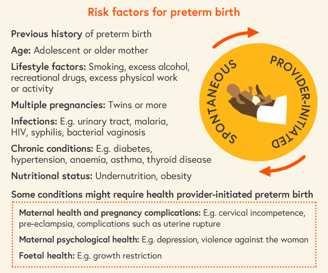 Summary list of the main risk factors for preterm birth, as described above
