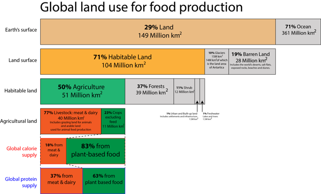 This bar chart shows how land is used globally for food production. There are six bars. From top to bottom they are labeled 'Earth's surface', 'Land surface'. 'Habitable land', 'Agricultural land', 'Global supply' and 'Global protein supply'. The top bar shows that 29% of the Earth's surface is land and 71% is ocean. The other bars show what percentage of this land is used for food production in each of the relevant categories.