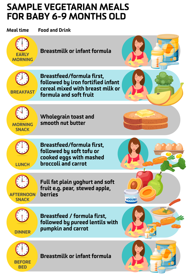 Sample Vegetarian Meals for Baby 6-9 Months Old, select the image to download a PDF version