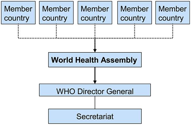 UN-type international health governance