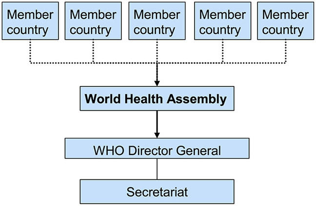 UN-type international health governance