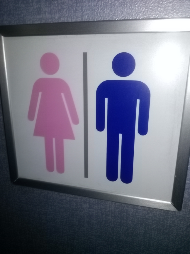 Picture of a toilet sign from which shows the female character in pink and the male in blue.