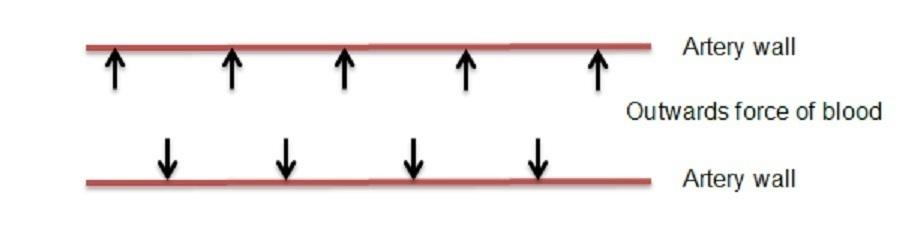 Diagram depicting blood pressure in an artery