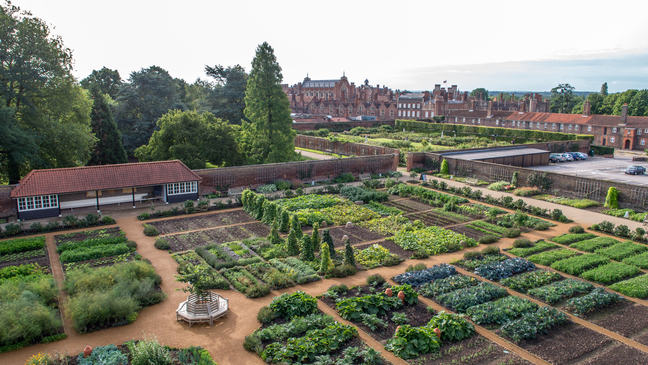 An aerial photo of the Royal kitchen Gardens showing the vegetable patches
