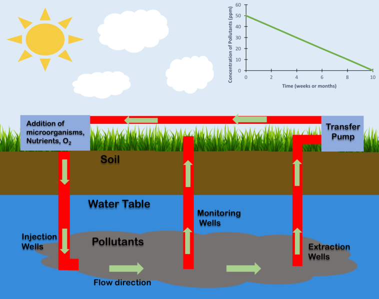 Diagram to show contaminants that leak into groundwater and the flow which can recirculate water through a transfer pump and inject microorgnanisms until the concentration of pollutants decreases and the clean water can be utilized. The chart in the upper right hand corner depicts a sample trend for the concentration of pollutants over several weeks or months