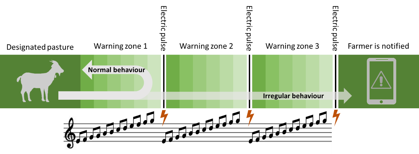 Figure 2 - Schematic representation of the 3 repeated cycles of audio warnings (increasing in tone and intensity) followed by an electric pulse before the farmer is notified about the 'escaped' animal