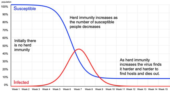 Graphs illustrating herd immunity