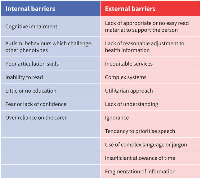 This table describes internal and external barriers. It is available as a text and pdf download in the See Also section below