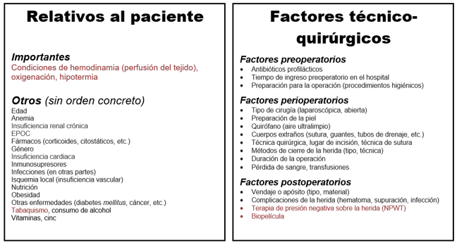 Image showing the various factors of importance for wound healing including patient-related factors and technical-surgical factors