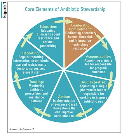 A summary of the core elements of antibiotic stewardship.