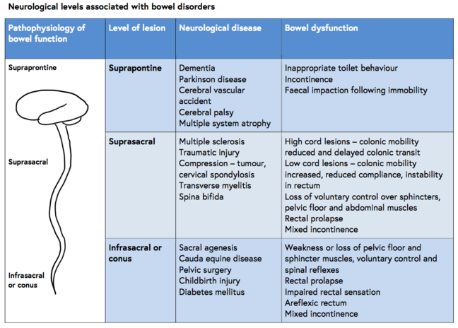 Neurological levels associated with bowel disorders