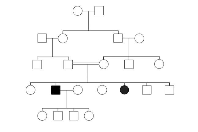 An pedigree depicting autosomal recessive inheritance