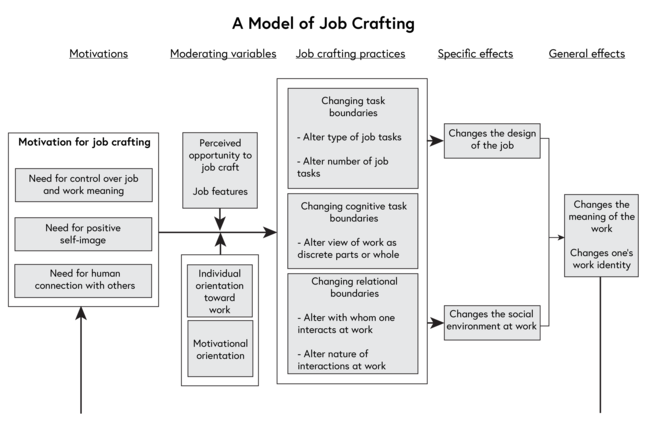 A diagram showing a model of job crafting with five columns. Column 1 Motivations. This features a box entitled Motivation for job crafting. Within the box are Need for  control over job and work meaning, Need for positive self-image and Need for human connection with others. This all point to Column 3 Job crafting practices. In Column 2 Moderating Variables are the following which feed into Column 3 Job Crafting Practices. In Column 2 are the following: Perceived opportunity to job craft and Job features. Below and grouped together are Individual orientation toward work and Motivational orientation. Column 3 Job crafting practices contains three boxes. Box 1: Changing task boundaries, Alter job tasks, Alter number of job tasks. Box 2: Changing cognitive task boundaries, Alter view of work as discrete parts of whole. Box 3: Changing relational boundaries - Alter with whom one interacts at work, Alter nature of interactions at work. The content of Column 3 feeds into Column 4 Specific effects which contains two boxes: Changes the design of the job and Changes the social environment at work. Both of these boxes feed into Column 5 General effects. This has only one box which reads Changes the meaning of the work and Changes one's work identity.