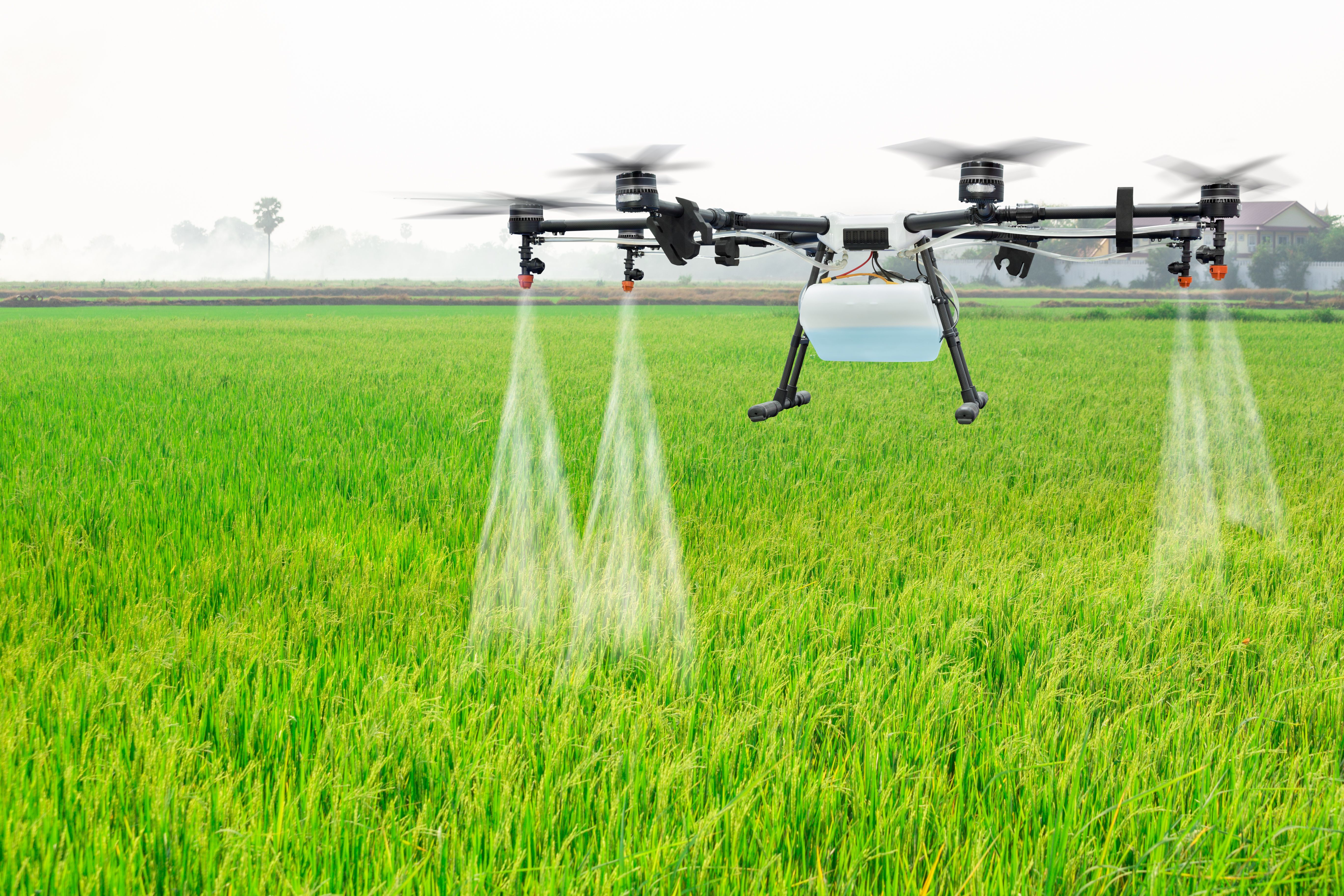 A drone flying over a crop