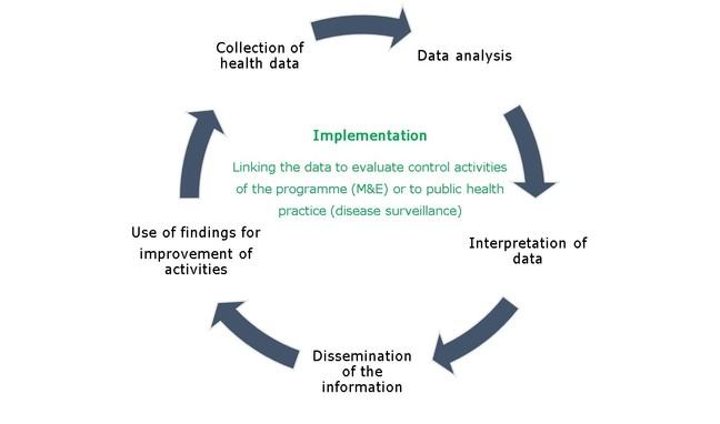 Path of data of M&E and disease surveillance from data collection to application.
