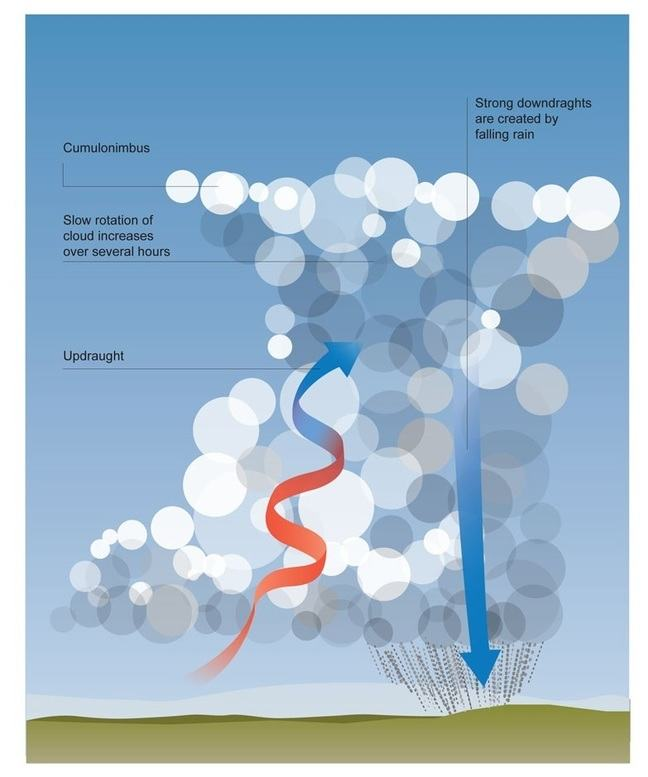 Graphic showing a large cumulonimbus cloud with a red arrow becoming blue which is an updraught, a blue arrow pointing downwards through the cloud, which is a strong downdraught created by the falling rain, and a caption near the top reading: slow rotation of the cloud increases over several hours.