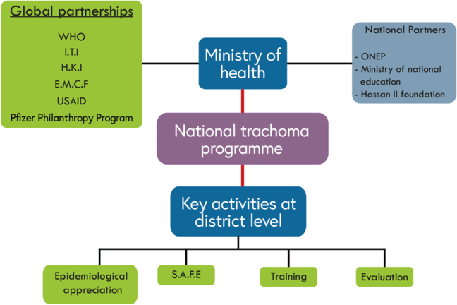 The ministry of health provides links with global partners and national partners and manages the national trachoma programme which, in turn, coordinates key activities at district level: epidemiology, SAFE interventions, training and evaluation.