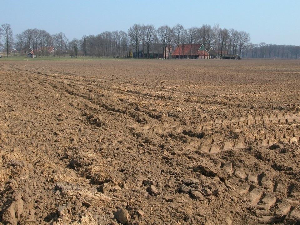 Poor sandy soils for agriculture