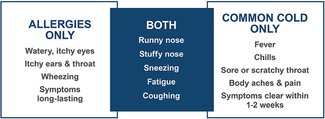 Table comparing symptoms of allergies and common colds. Although both of them have their characteristic symptoms, they share some common symptoms including a runny and stuffy nose, sneezing, fatigue, and coughing.