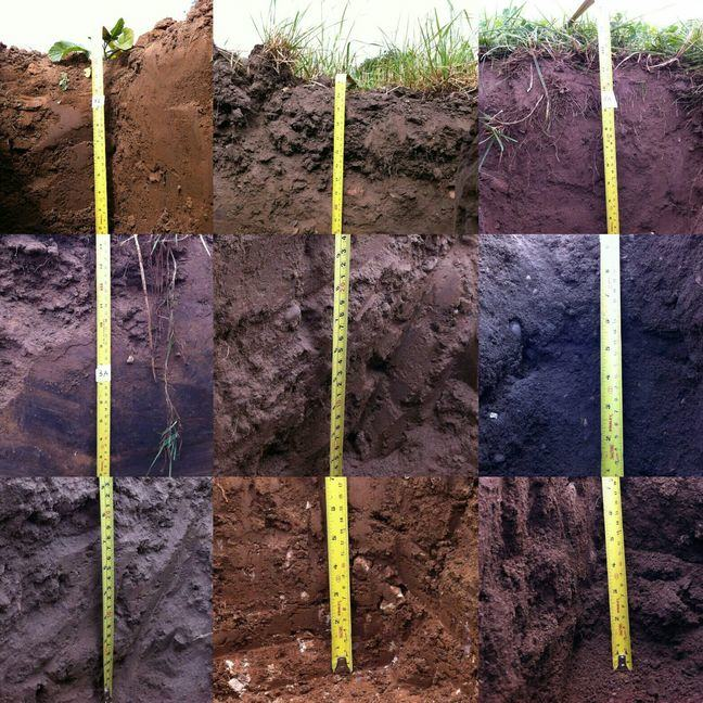 A collage of different types of soil