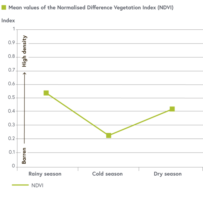 A graph showing the variation of the vegetation index