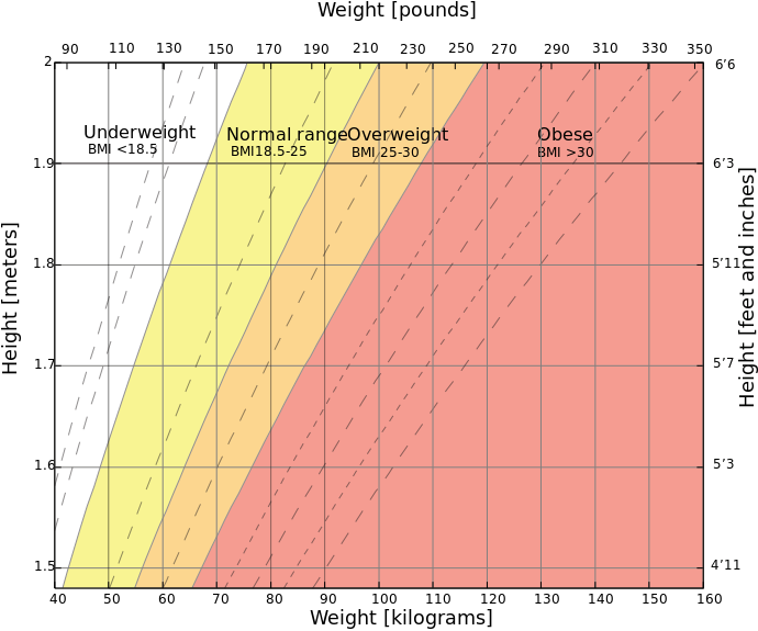 The Body Mass Index Chart
