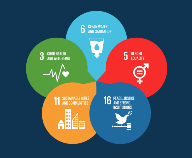 The five sustainable development goals we will be looking at in the course, intertwined. These are SDG 16 peace, justice and strong institutions, SDG 6 clean water and sanitation, SDG 11 sustainable cities and communities, SDG 3  good health and wellbeing, and SDG 5 gender equality.