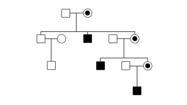 A pedigree depicting x-linked recessive inheritance