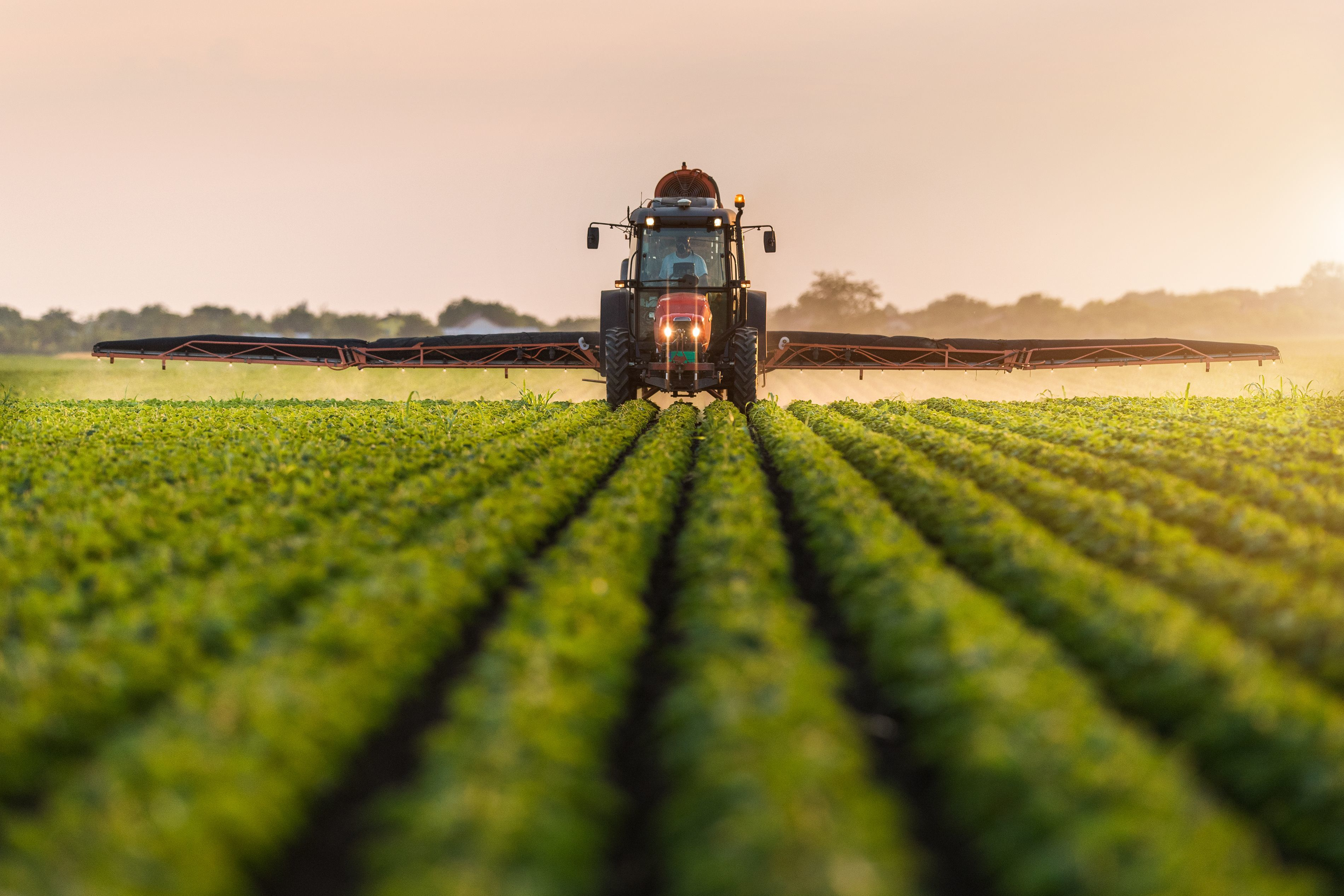 a tractor moving through a crop spraying several rows to either side